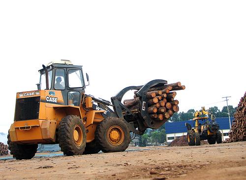 Constituidas en Galicia as primeiras Sociedades de Fomento Forestal (Sofor)