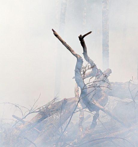 Ocho parroquias están bajo vigilancia especial por riesgo de incendios