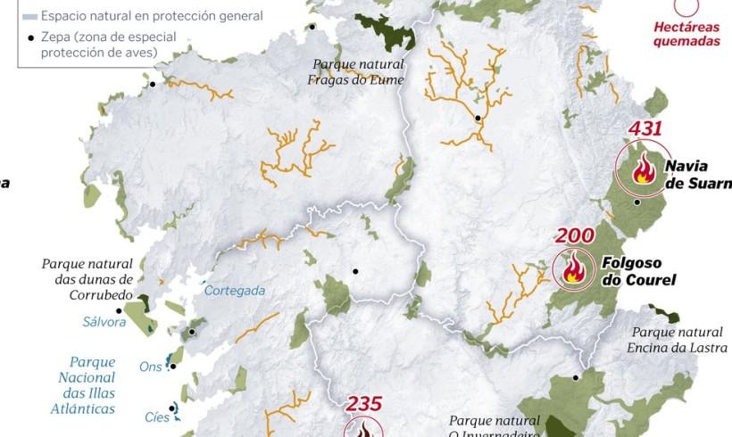 Único bosque de madroños en Galicia devastado por un incendio